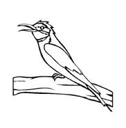 Uccello da colorare 172