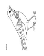 Uccello da colorare 175