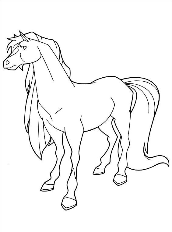 Horseland da colorare 12