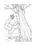 Hulk da colorare 78