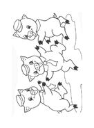 I tre porcellini da colorare 11