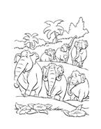 Il libro della giungla da colorare 33