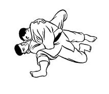Judo da colorare 31