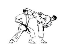 Judo da colorare 35