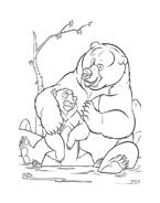Koda fratello orso da colorare 71