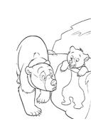 Koda fratello orso da colorare 80