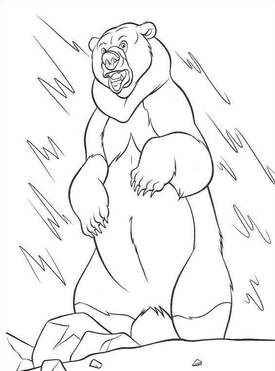 Koda fratello orso da colorare 127