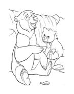 Koda fratello orso da colorare 134