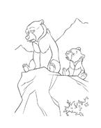 Koda fratello orso da colorare 135