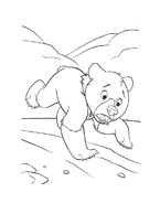 Koda fratello orso da colorare 136