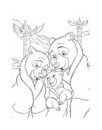 Koda fratello orso da colorare 191