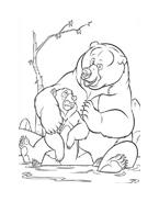 Koda fratello orso da colorare 226