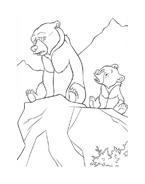 Koda fratello orso da colorare 227
