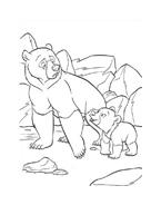 Koda fratello orso da colorare 235