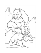 Koda fratello orso da colorare 236