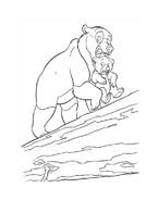 Koda fratello orso da colorare 239