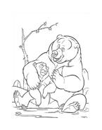 Koda fratello orso da colorare 240