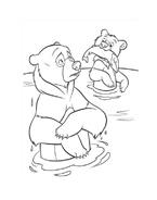 Koda fratello orso da colorare 241