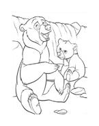 Koda fratello orso da colorare 242