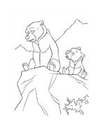 Koda fratello orso da colorare 243