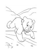 Koda fratello orso da colorare 277