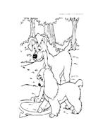 Lilli e il vagabondo da colorare 19