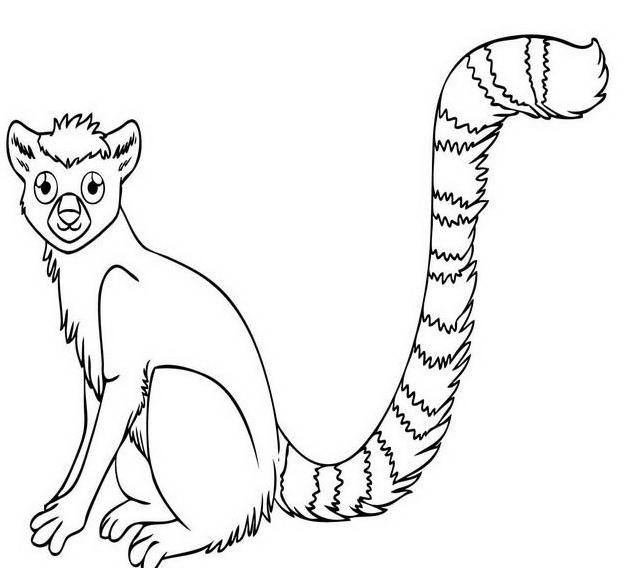 Scimmia da colorare 22