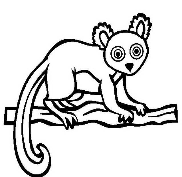 Scimmia da colorare 24