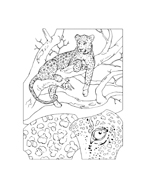 Leopardo da colorare 2