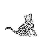 Leopardo da colorare 3