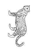 Leopardo da colorare 4