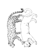 Leopardo da colorare 6
