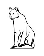 Leopardo da colorare 11