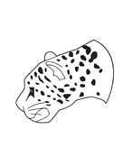 Leopardo da colorare 14