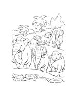 Il libro della giungla da colorare 119