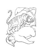 Il libro della giungla da colorare 138