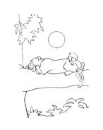 Il libro della giungla da colorare 148