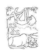 Il libro della giungla da colorare 167