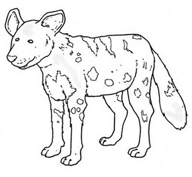 Animale da colorare 163