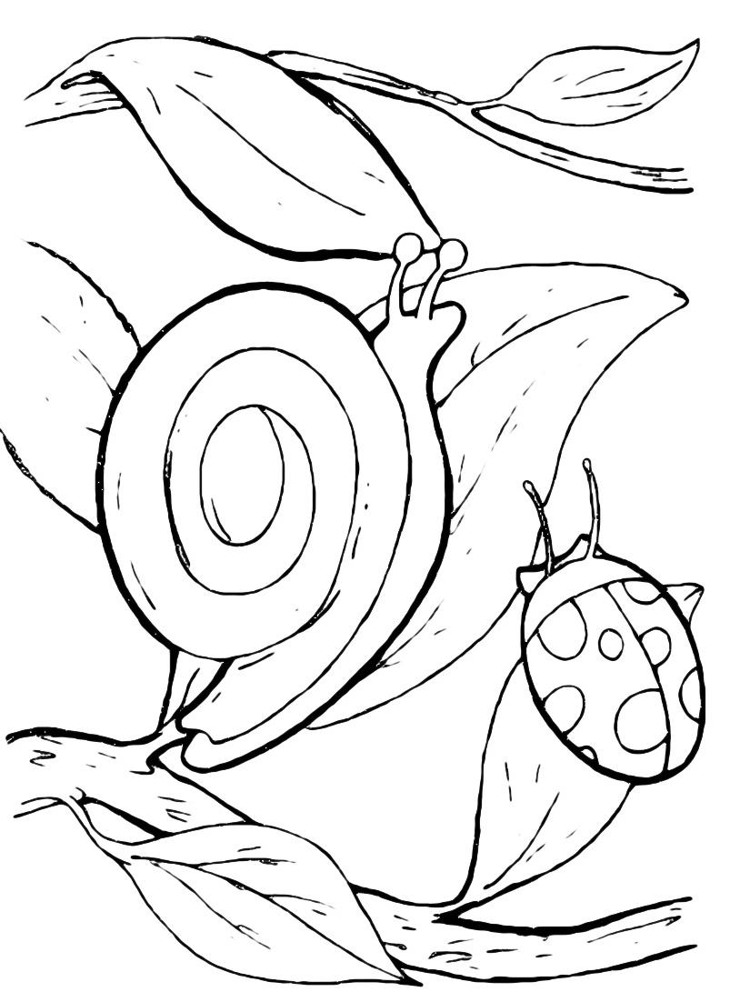 Lumaca da colorare 19