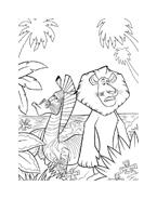 Madagascar da colorare 102