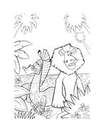 Madagascar da colorare 143
