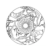 Mandala da colorare 109