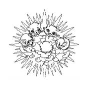 Mandala da colorare 123