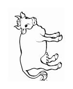 Mucca e bufalo da colorare 5