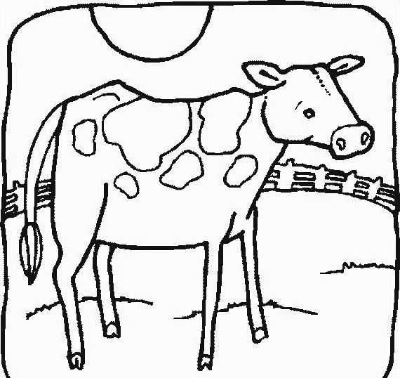 Mucca e bufalo da colorare 15