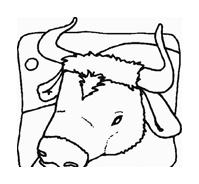 Mucca e bufalo da colorare 20