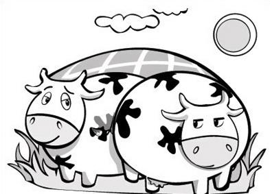 Mucca e bufalo da colorare 29