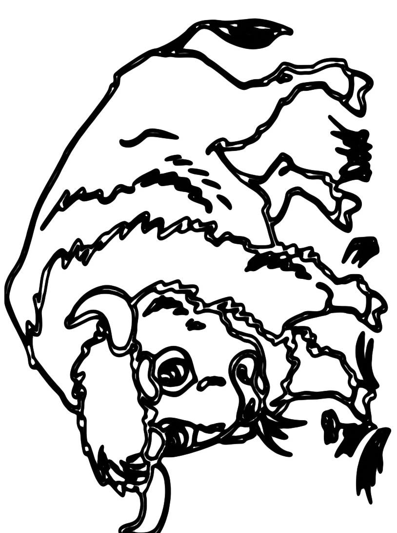 Mucca e bufalo da colorare 38