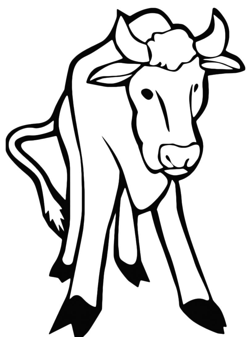 Mucca e bufalo da colorare 59